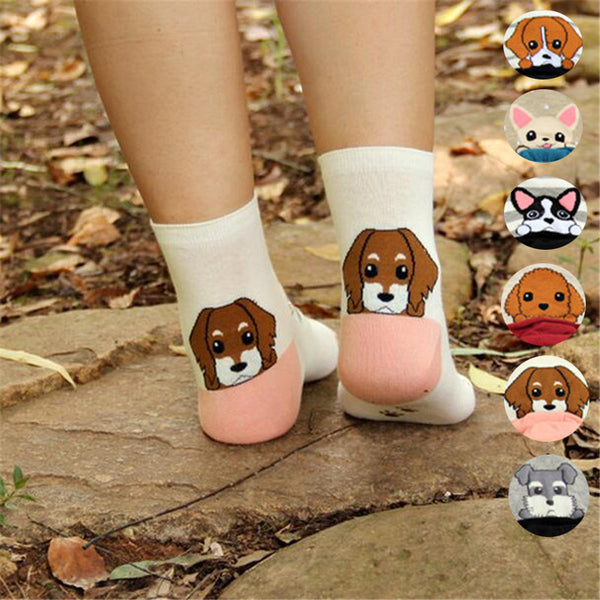 Puppy Pattern Socks