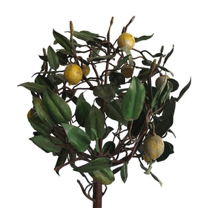 Vintage Italian Lemon Trees- PAIR