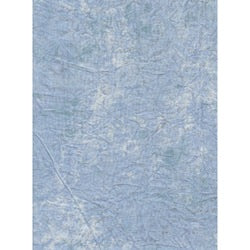 PRO 10X12FT DYED BLUE MUSLIN