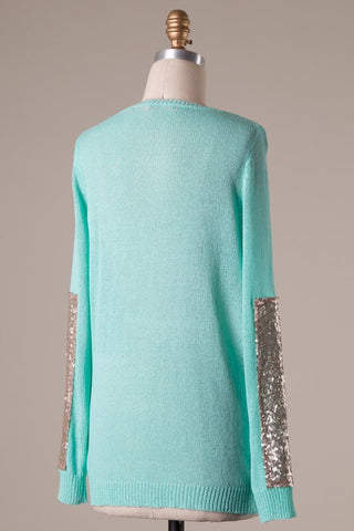 Sparkle and Shine Sequined Sleeved Sweater - Mint - Blue Chic Boutique  - 12