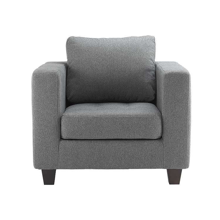 Modern chair, sofa, and sectional - Seattle furniture