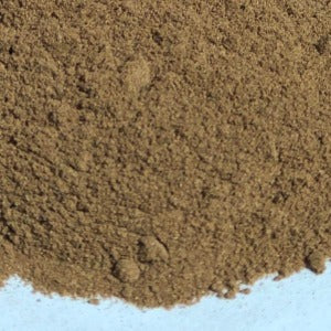 Close up bolet mushroom powder (suillius luteus)