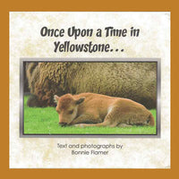 Once Upon a Time in Yellowstone, A Children's Book