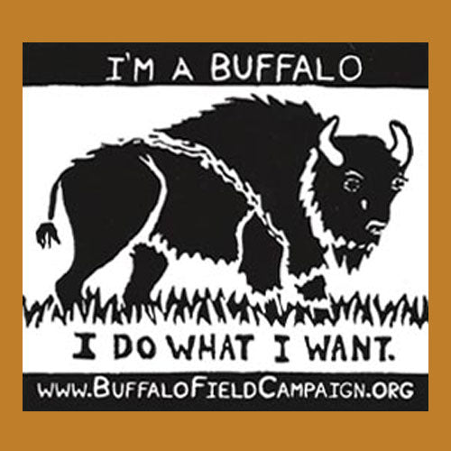 """I'm a Buffalo"" Bumper Sticker"
