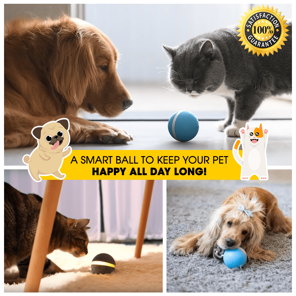 The LED Light Pet Motion Ball