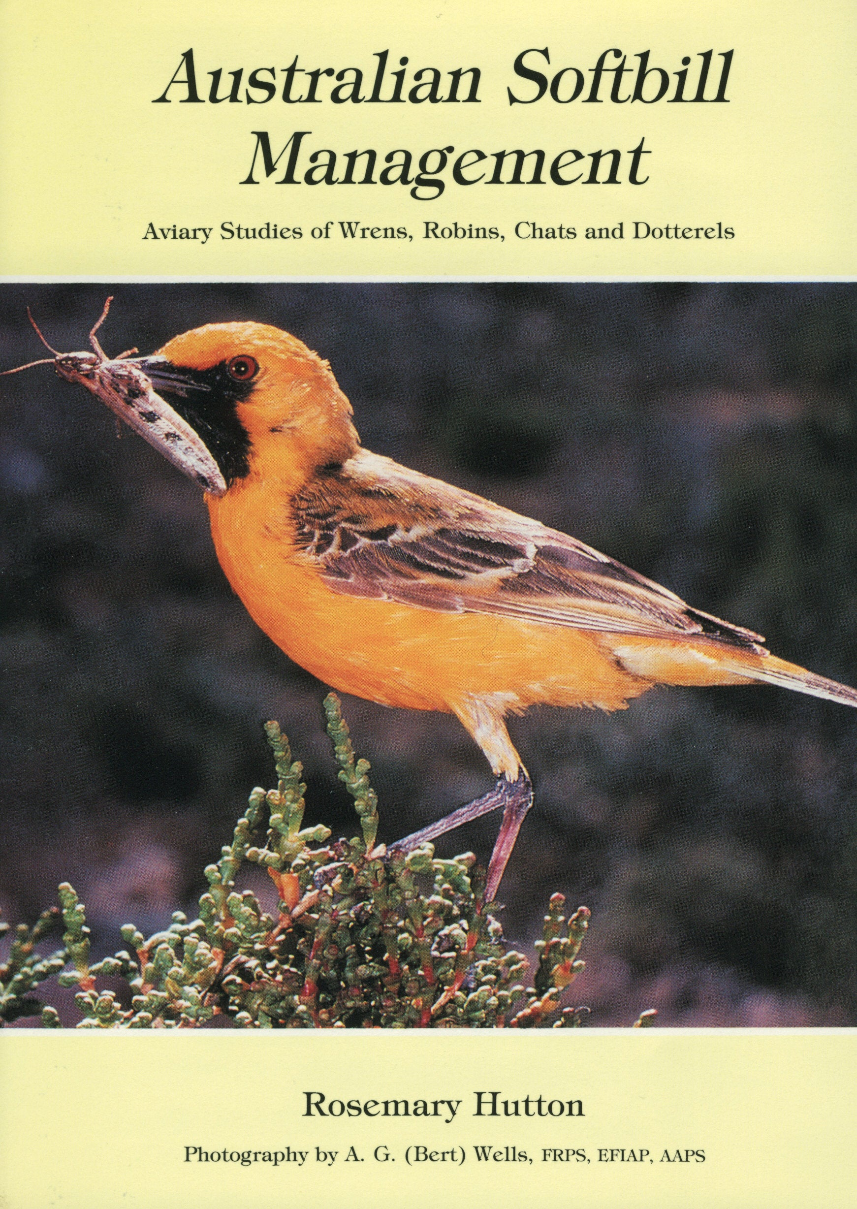 Australian Softbill Management:—Aviary Studies of Wrens, Robins, Chats and Dotterels