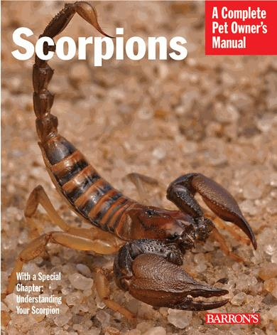 Scorpions—A Complete Pet Owner's Manual
