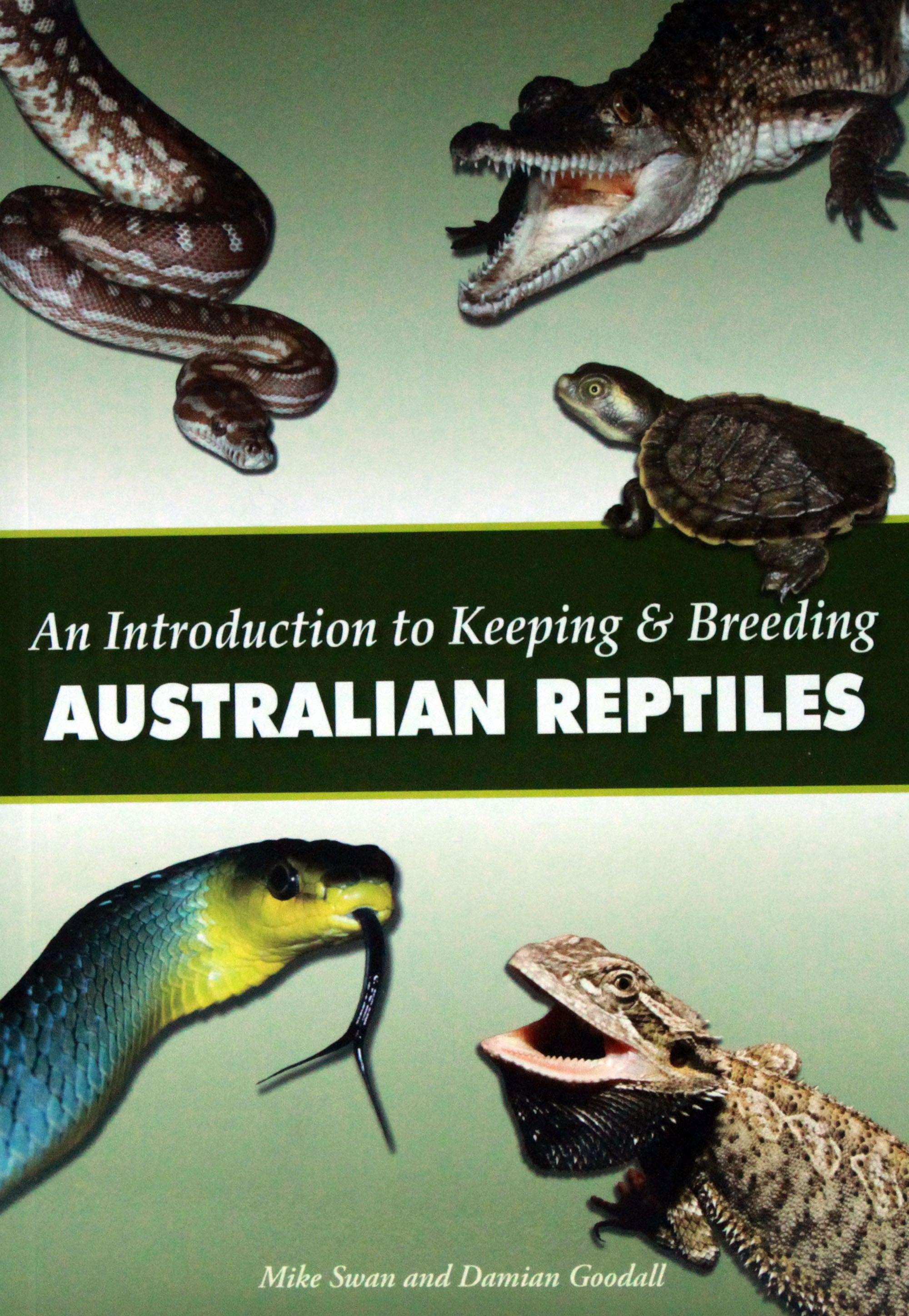 An Introduction to Keeping and Breeding Australian Reptiles
