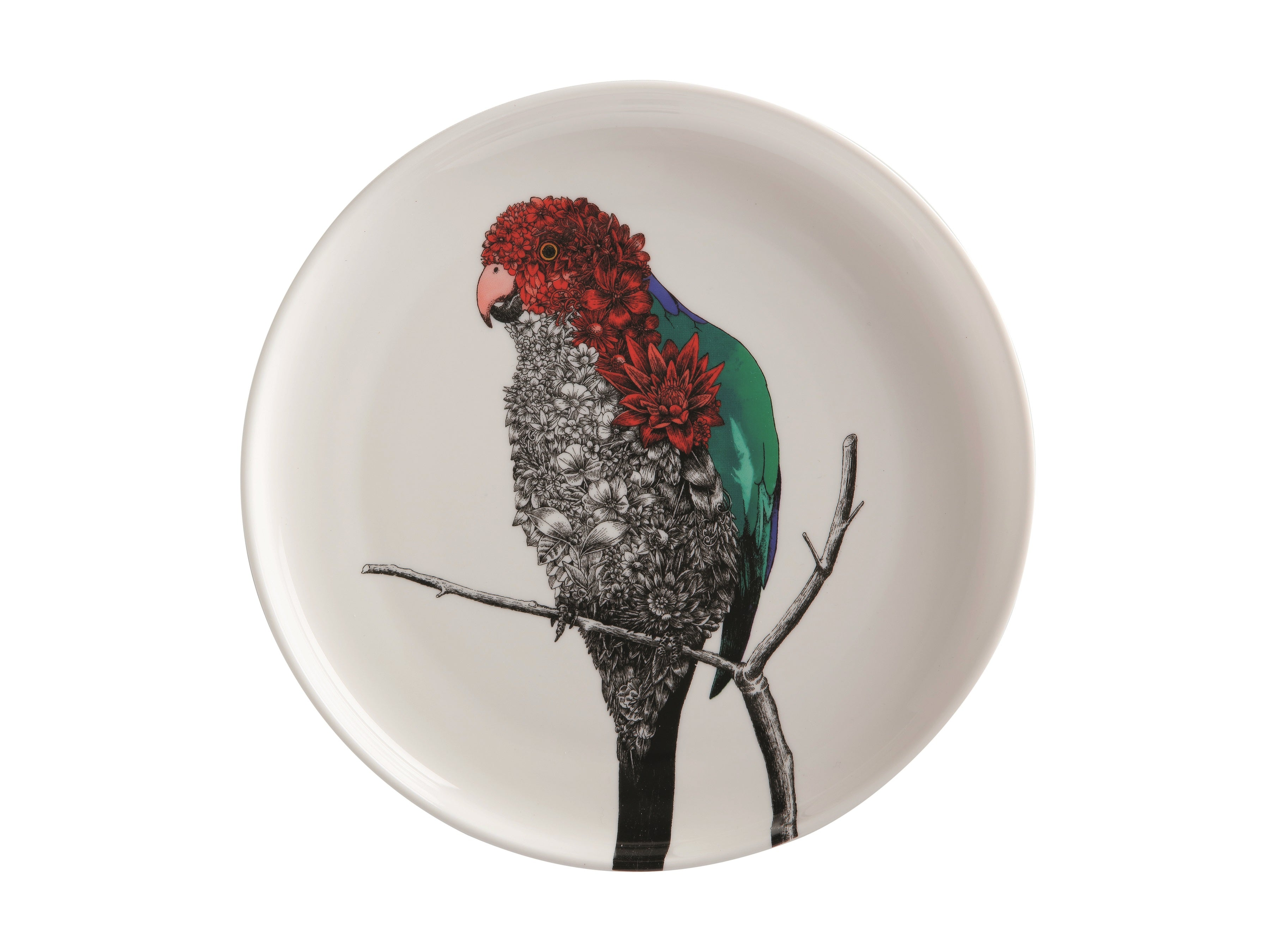 MW Marini Ferlazzo Birds Plate 20cm King Parrot Gift Boxed