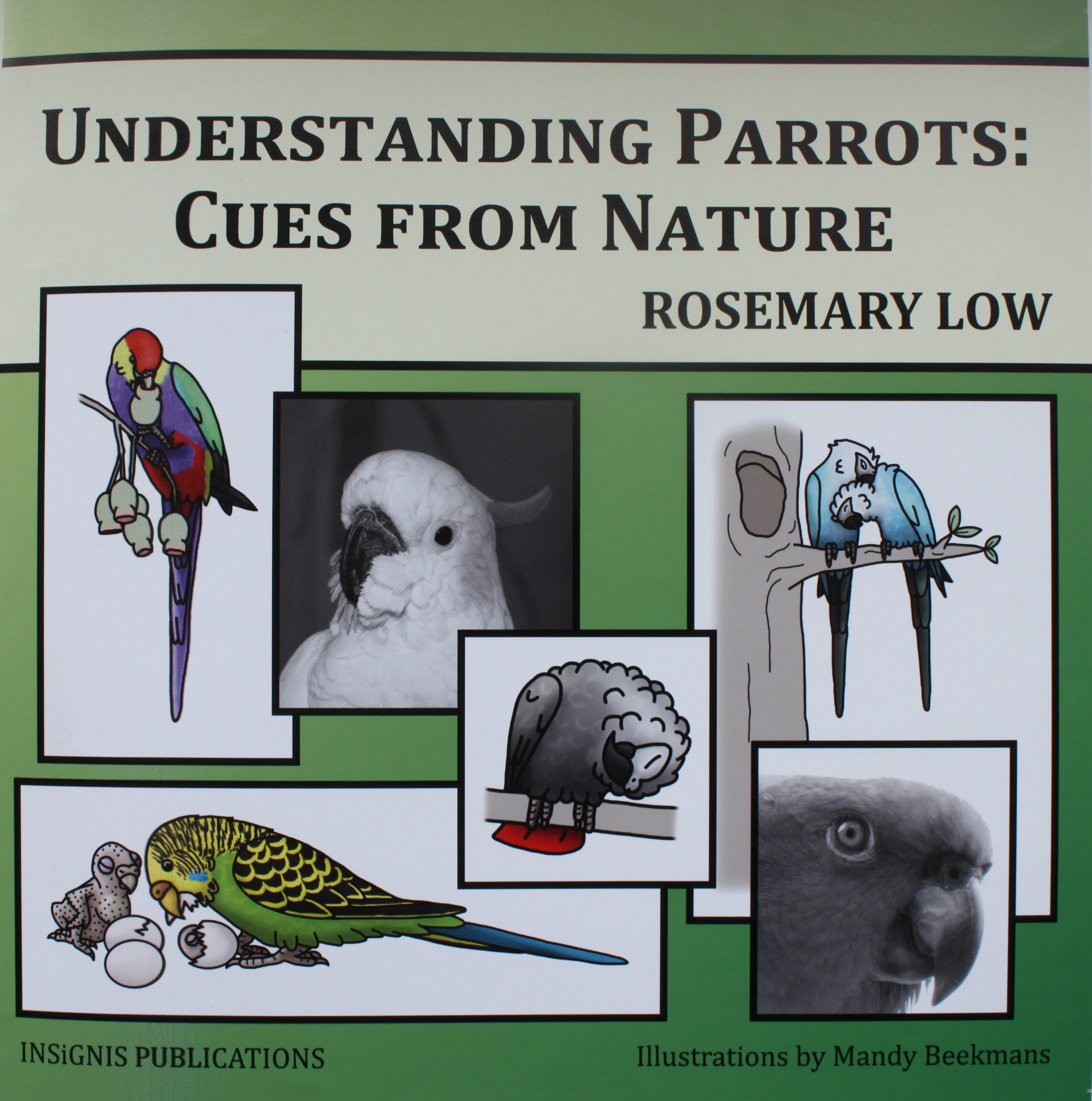 Understanding Parrots—Cues from Nature