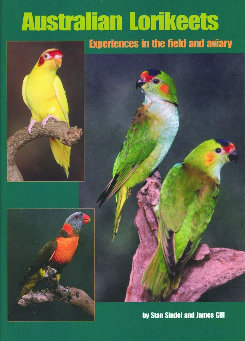 Australian Lorikeets—Experiences in the Field and Aviary (Revised)
