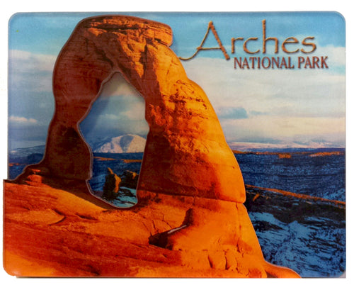 3-D Magnet Delicate Arch in Winter
