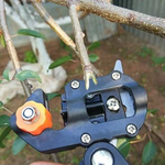 Professional Grafting Tool and Pruner