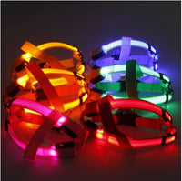 Flashing LED Light Harness Rope Belt  Pet Supplies