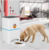 Pet Dog Cat Automatic Feeder