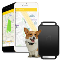 GPS Tracker Dog Mini GPS Pet Tracker App