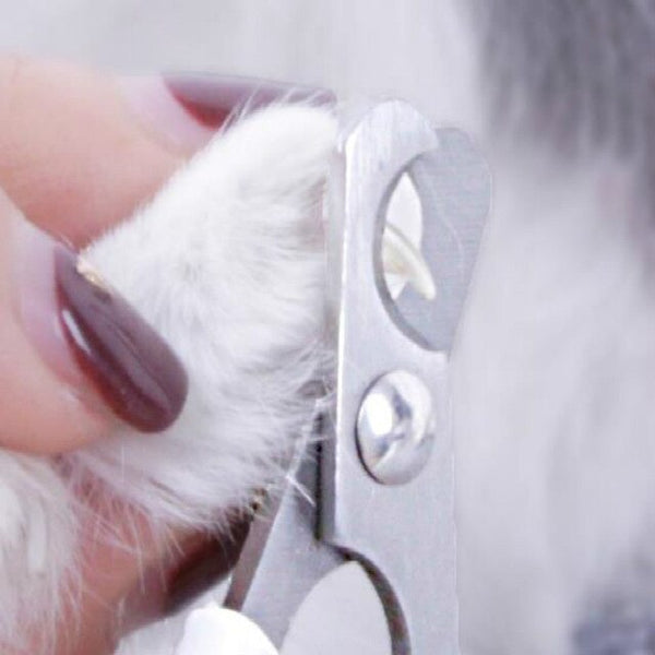 Dog Nail Grinder Pet Trimmer Clippers