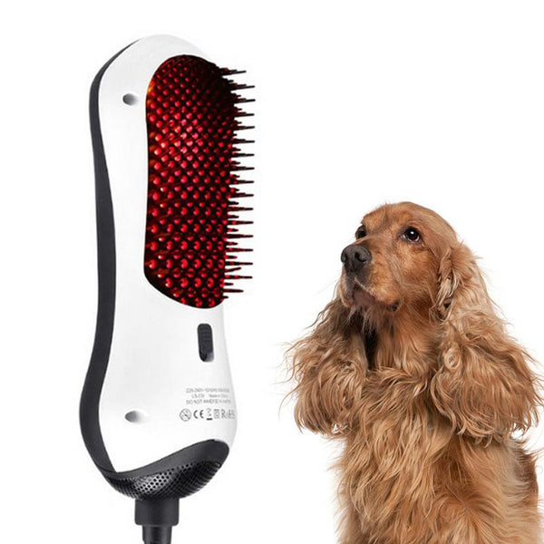 Grooming Pet Hair Dryer Hair Massage
