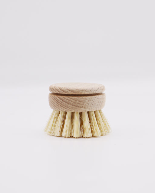 Replacement Head - Dish Washing Brush - Earth Mart