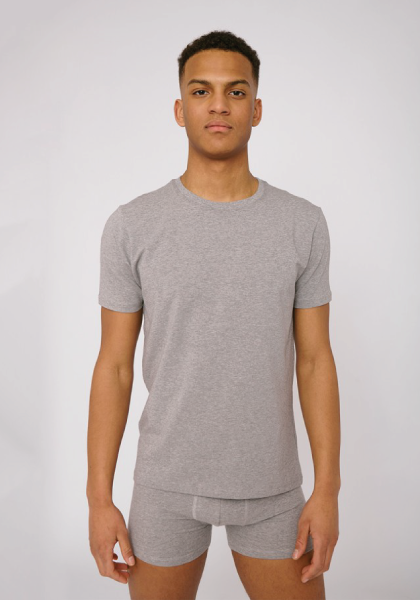 Organic Cotton Men's Tee - Grey