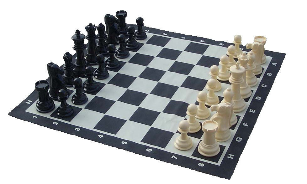 20cm (8 Inch) Giant Chess Set and Mat