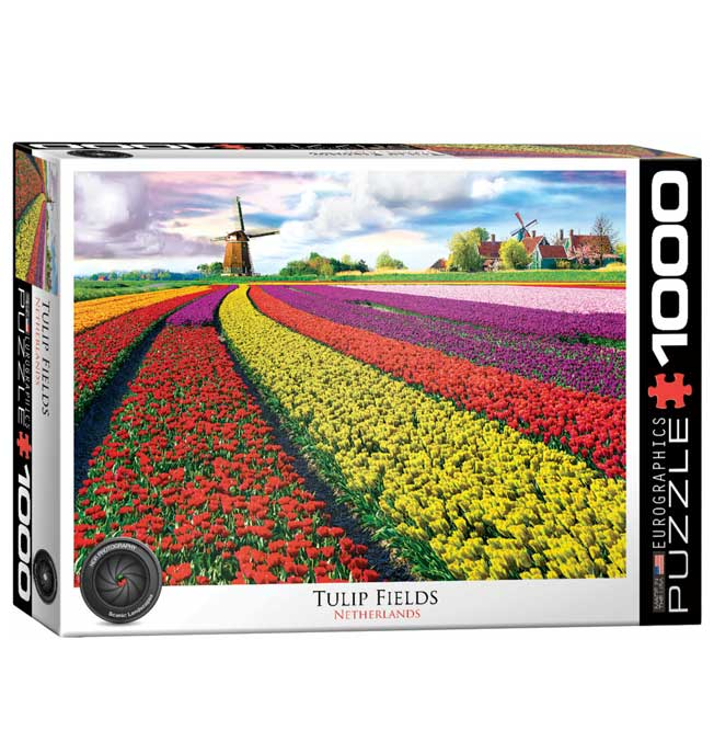 Tulip Field, Netherlands - Puzzle 1000 pieces