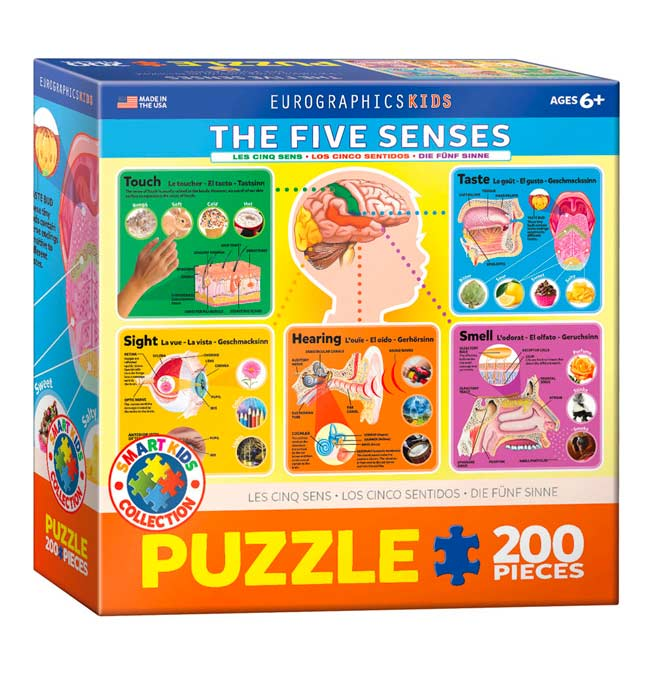 The Five Senses - Puzzle 100 pieces