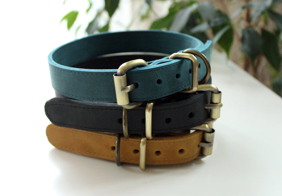 Medium dogs collar - Anger Refuge