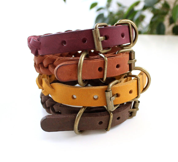 Small dog braid collar - Anger Refuge