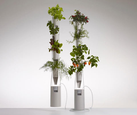 WINDOW FARMS. Grow your own fresh food even in the winter without dirt.