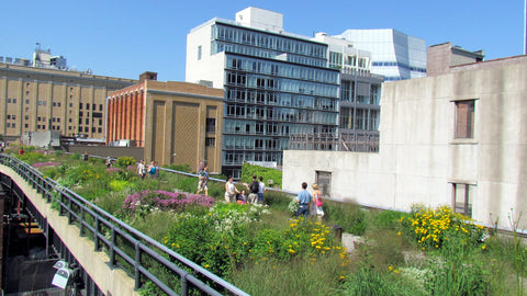The High Line in New York / CC David Berkowitz