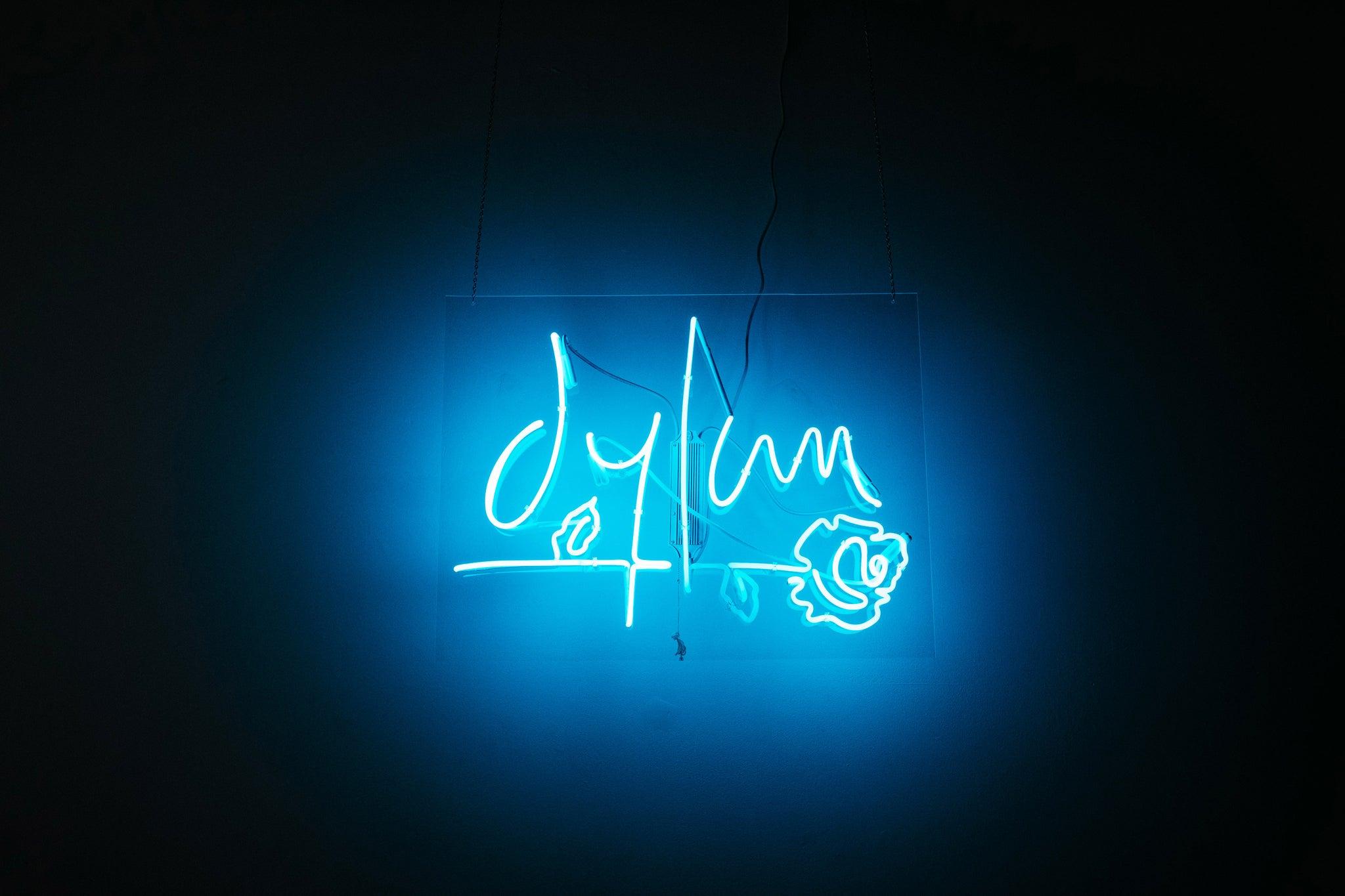 dylan-rieder-neon-light