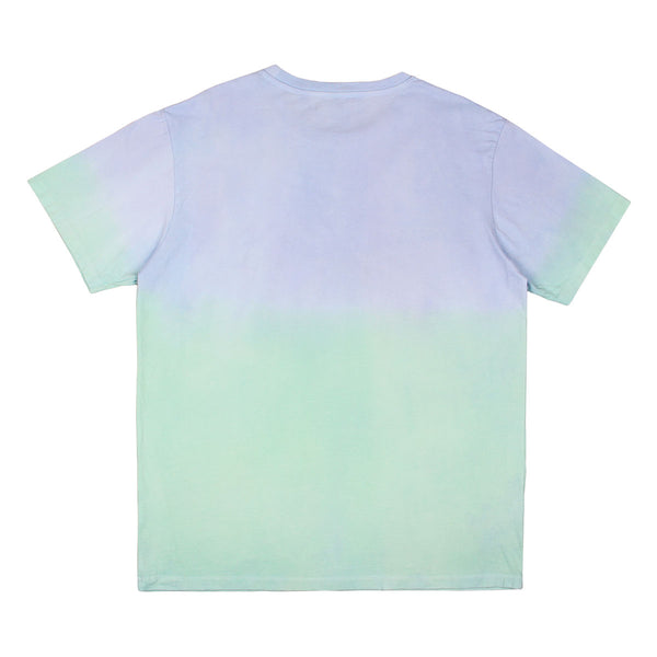 Signature T-Shirt Washed Green