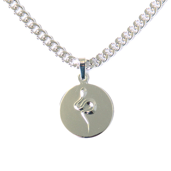 Snake Coin Necklace Silver