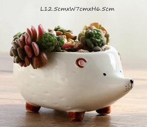 Hedgehog Planters