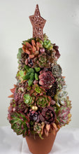 Load image into Gallery viewer, Succulent Christmas Tree