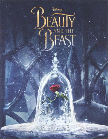 Beauty and the beast bedtime story