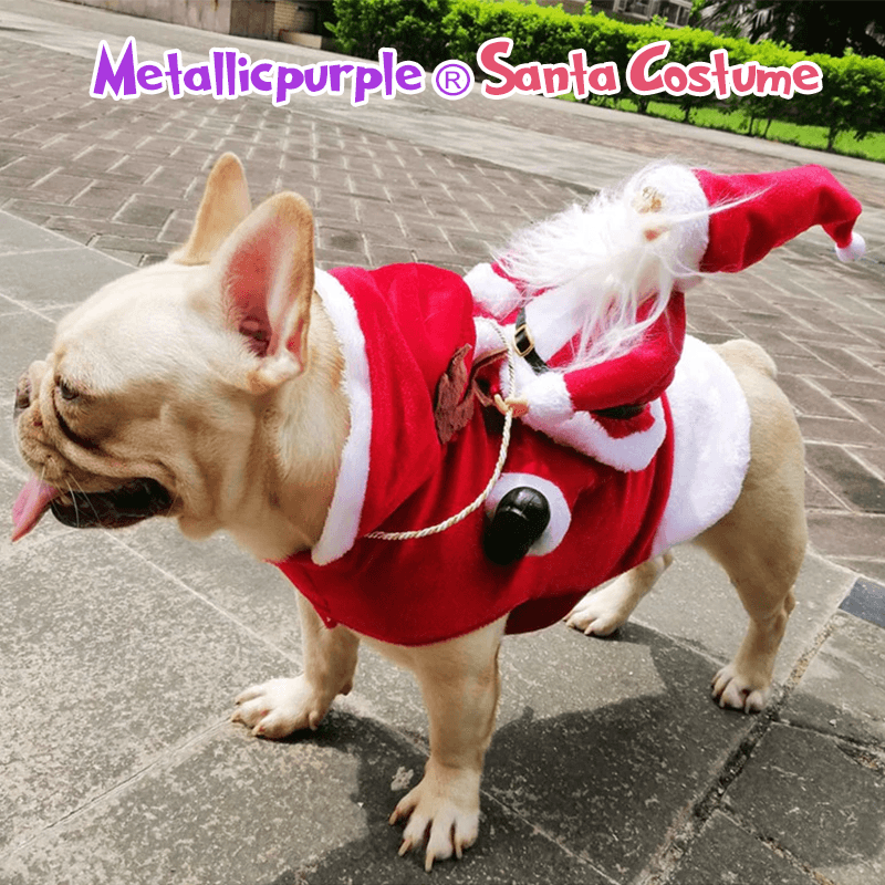 Metallicpurple® - Santa Costume ( 🔥Factory Outlet Offer 60% OFF Today! )
