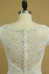 Lace Wedding Dresses Sheath V-Neck Court Train Beaded Neckline