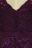 Plus Size Grape Modest Lace Evening Dresses V-Neck Sheath/Column With Applique And Ribbon