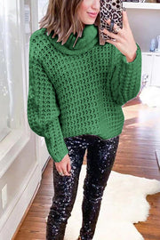 Allovely Solid Turtleneck Knit Sweater