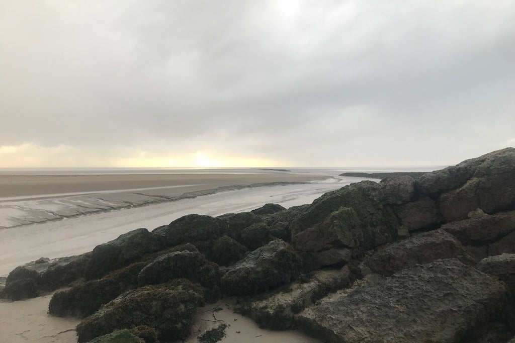 Morecambe Bay from Jenny Brown's Point