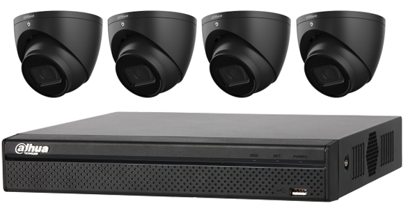 Dahua WizSense 6MP 4 CH Eyeball IP CCTV Kit (with 2TB HDD) Black