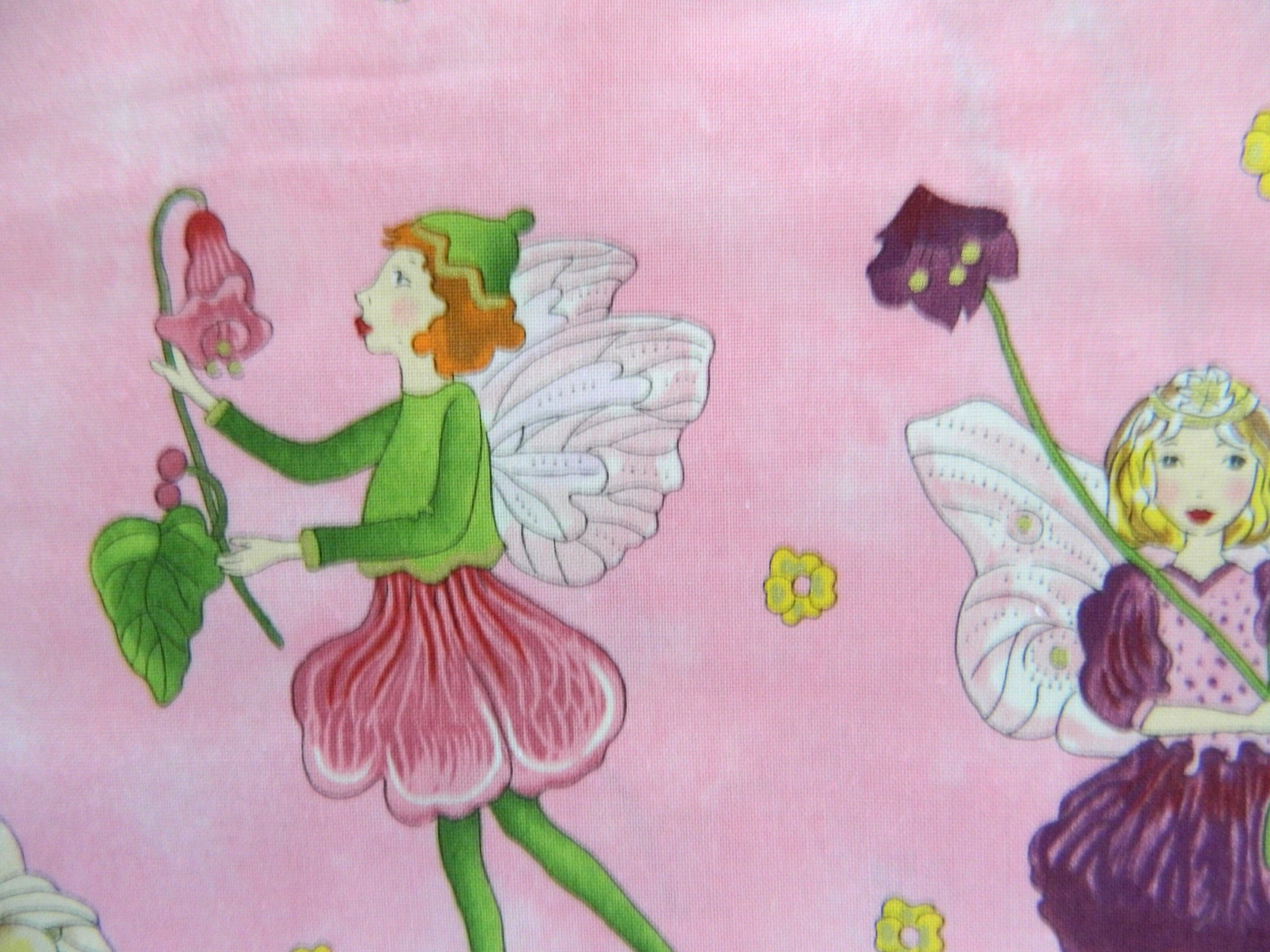 Childrens  Flora fairies