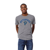 Pittsburgh Panthers Heather Gray Victory Falls Short Sleeve Tee