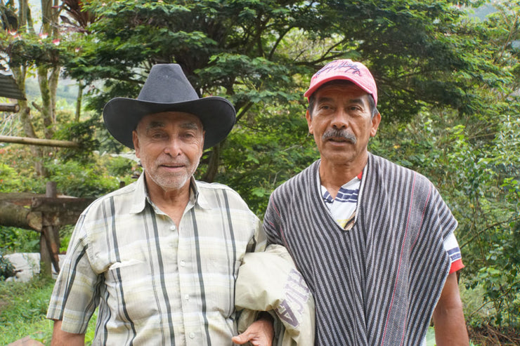 Small Producers of Ibagué - Colombia