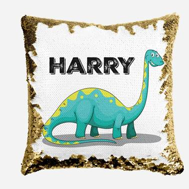 Aqua Bronty - Personalised Cushion Cover - Mikki & Me Kids