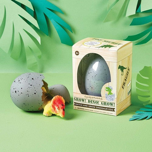 Dino Grow Hatch Egg - Mikki & Me Kids