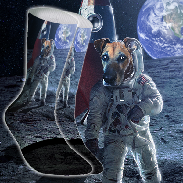 Astronaut Pet Face Sock