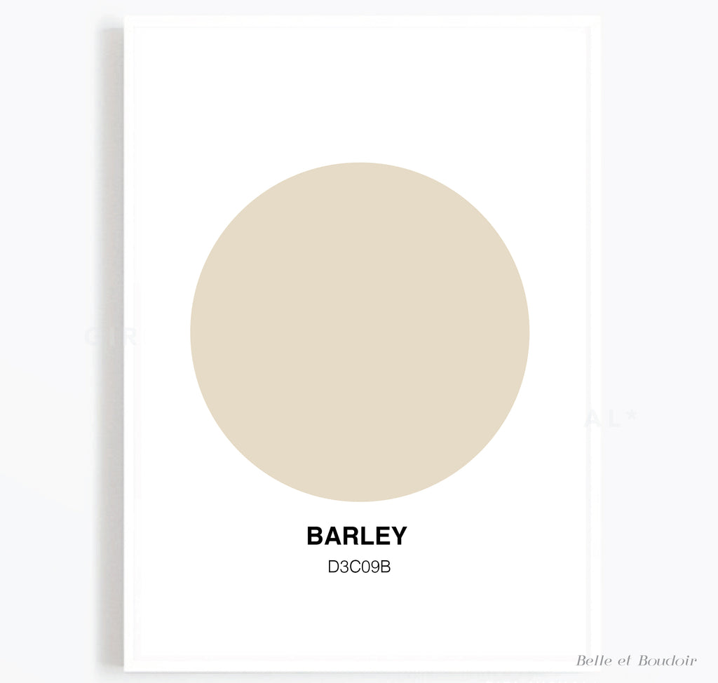 Colour Series - Barley